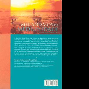 mecanismos-da-mediunidade-1